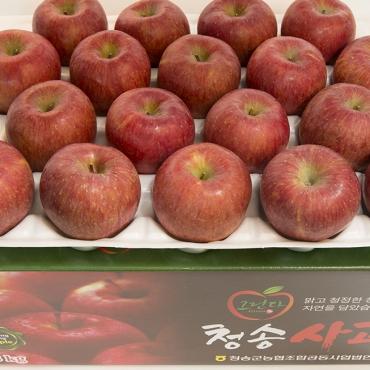 못난이 사과 8kg (36내)